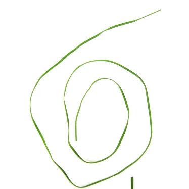 Συνθετικό σουέτ κορδόνι 2,5 mm πράσινο  -10 τεμάχια x 1 μέτρο