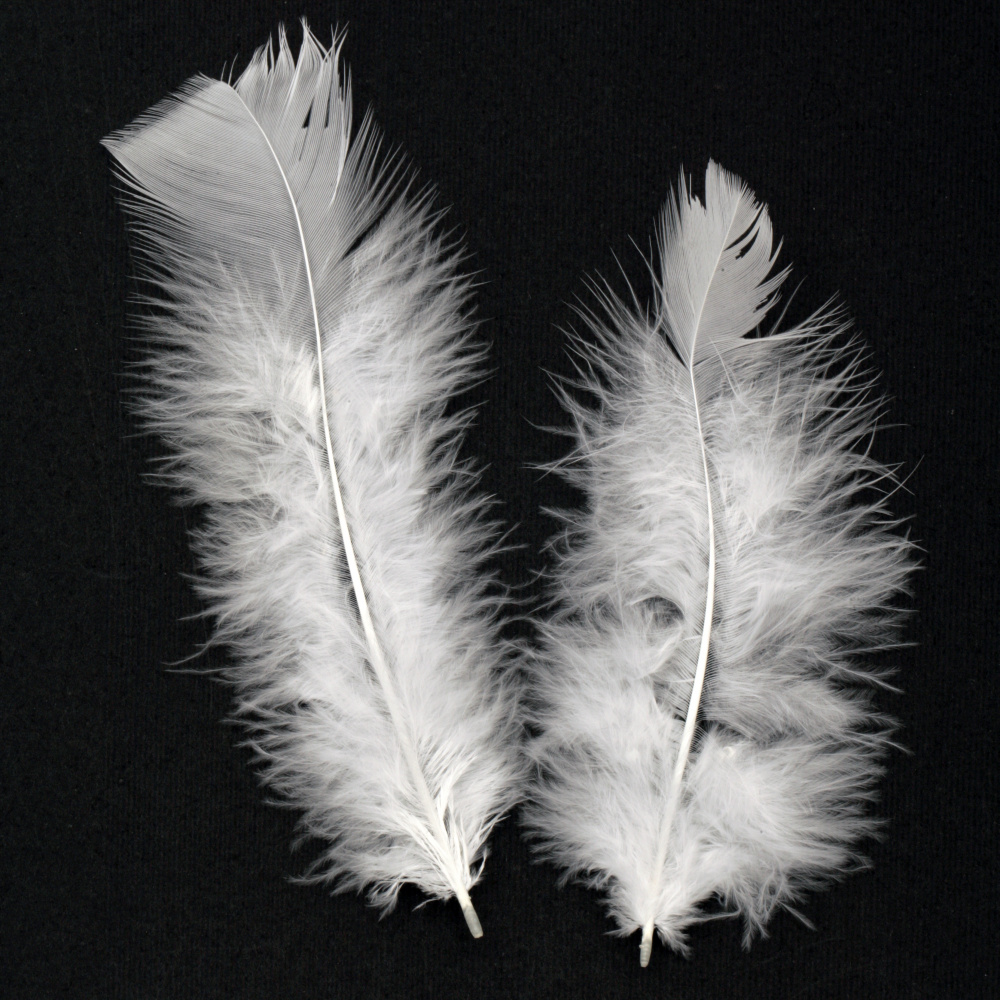 Delicate white feather for decoration 120~170x35~40 mm  - 10 pieces