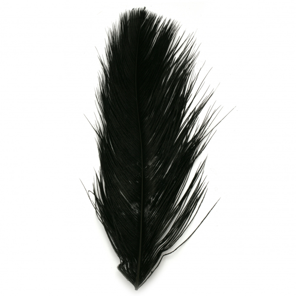 Ostrich feather for decoration 300~350 mm color black