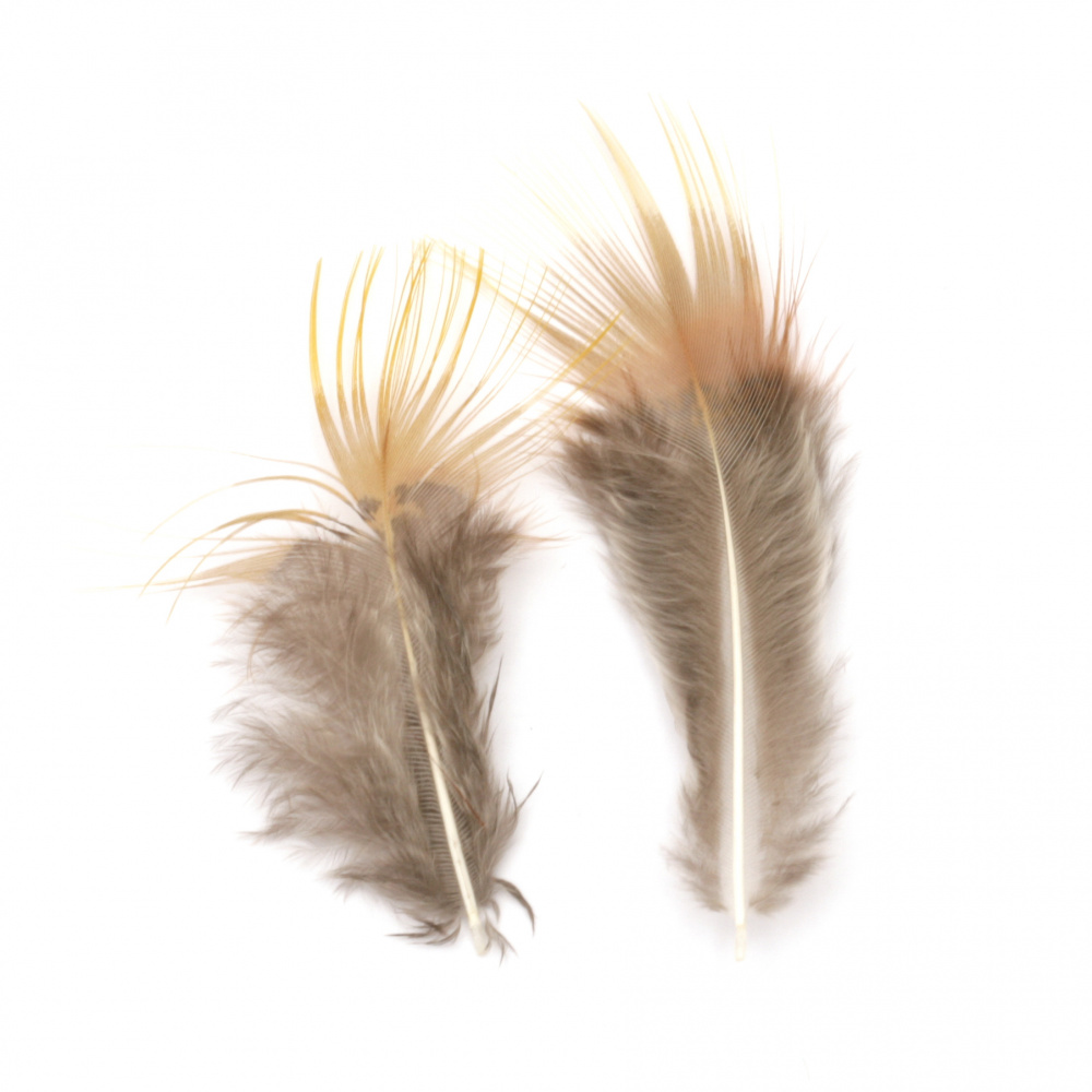 Feather for decoration 30~70 mm color orange and gray - 10 pieces