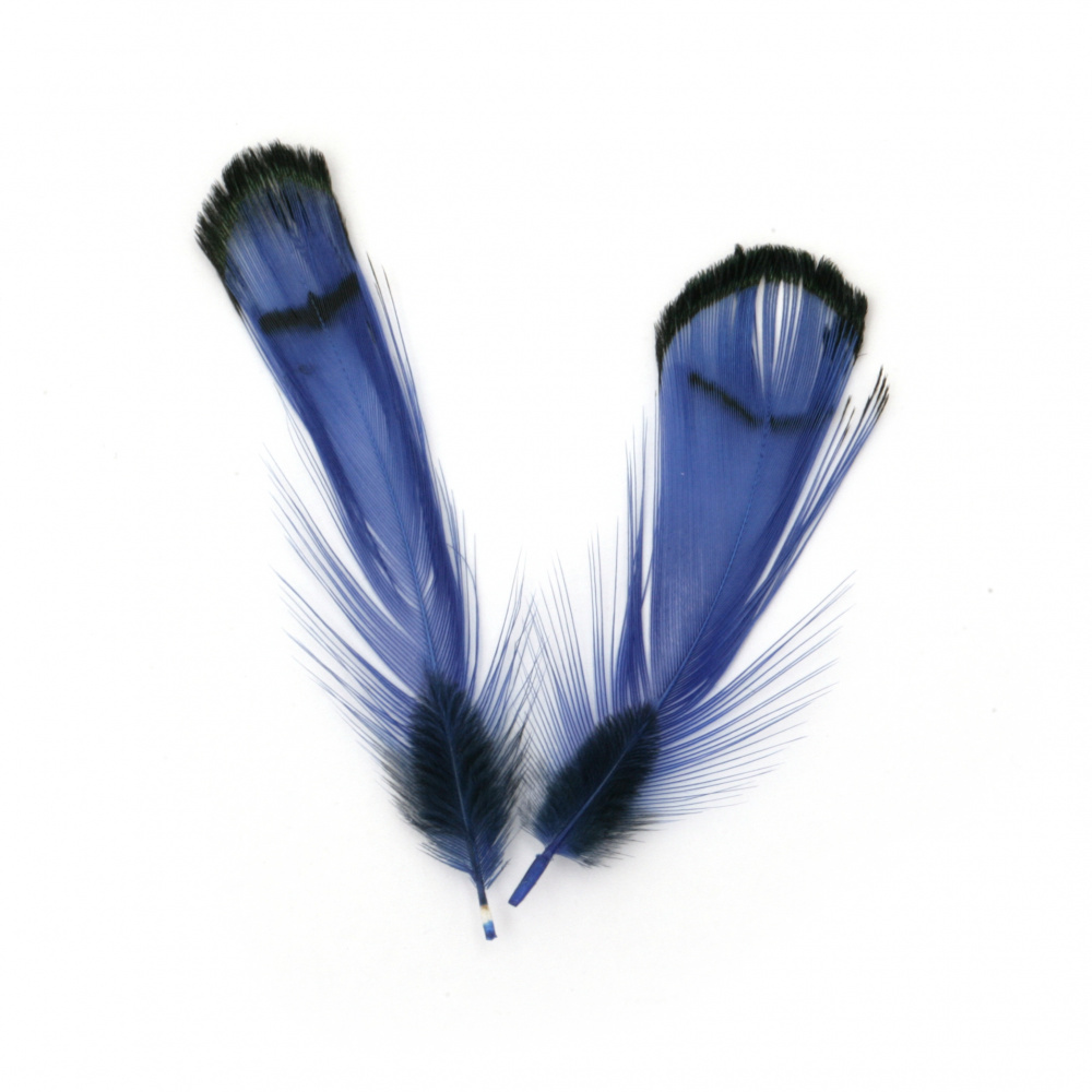 Feather for decoration 30~60 mm color blue and  black - 10 pieces