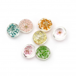 Clear round glass bead with real dried flowers 20x16mm mix