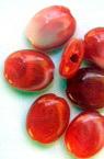 Cilindru oval plat 13x10x5 mm perlă roșie -50 grame