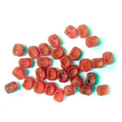 Acrylic crackle cube bead 6x8 mm red - 50 grams