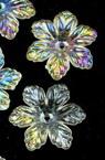 Мънисто кристал цвете 19х5 мм дупка 1 мм прозрачно ДЪГА -20 грама ~ 36 броя