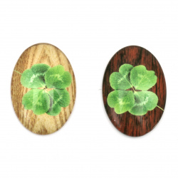 Cabochon Beads for glas, Half Round for Gluing, DIY, Clothes, Jewellery hemisphere 35x25x7 mm clover -5 pieces