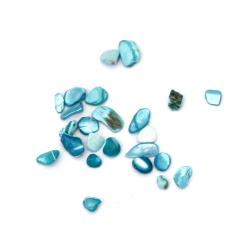 Морски раковини чипс 2~15x2~10x1~5 мм цвят син -50 грама