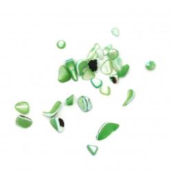 Морски раковини чипс 2~15x2~10x1~5 мм цвят зелен -50 грама