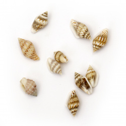Sea Shells 7 ~ 12x3 ~ 7 mm, color White, brown -50 grams