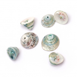 Sea Shells 12 ~ 19x11 ~ 16mm, Hole 1mm, color turquoise 15 ~ 20 pieces ~ 50 grams
