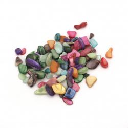 Морски раковини чипс 3~12x1~6x0.5~5 мм микс цветове -50 грама
