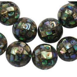 Abalone PAUA mother-of-pearl bead 15 ~ 16 mm hole 0.8 mm