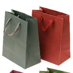Paper Gift Bag 18x23 cm