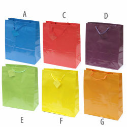 Paper Gift Bag 26x32 cm Mixed Color