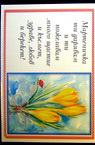 Картички с пожелание МИНИ 35/50 мм-50 броя