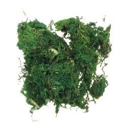 Decoratiune Moss -50 grame