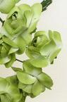 Buchet de trandafir de hârtie și sârmă de 20 mm verde și alb -12 bucăți