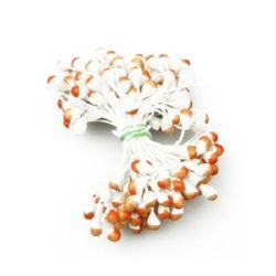 Stamens pearl double-sided for Decoration 5x8x57 mm two-tone white and orange ~95 pieces