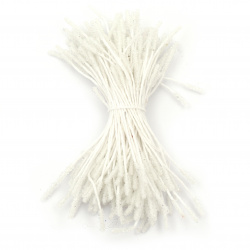 Stamens type sugar double-sided for embellishment of festive cards, frames, albums 3x10x60 mm white ~ 140 pieces
