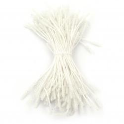 Στήμονες sugar 3x10x60 mm λευκό ~ 140 τεμάχια