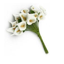 EVA foam potassium bouquet with leaf for various party decoration 16x30 mm champagne -12 pieces