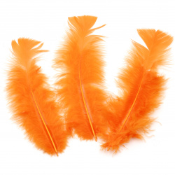 Feather for decoration 120~170x35~40 mm dark orange - 10 pieces