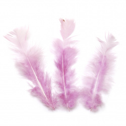 Feather for decoration 120~170x35~40 mm  pale purple - 10 pieces