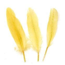 Feather for decoration 160~215x36~47 mm  light khaki - 10 pieces