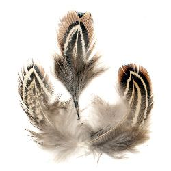 Furry feather for art decoration  50~80 mm brown - 10 pieces