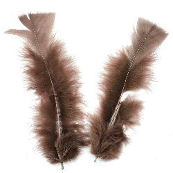 Furry feather for art decoration 120~170x35~40 mm brown - 10 pieces