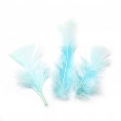 Delicate feather for various decoration 120~170x35~40 mm blue light - 10 pieces