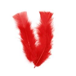 Feather for decoration 120~170x35~40 mm red - 10 pieces