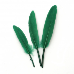 Feather  for decoration 100~150x15~20 mm green dark - 10 pieces