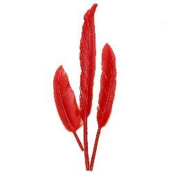 Feather for decoration 100~150x15~20 mm red - 10 pieces