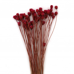 Bouquet of dried flowers for decoration color pink ± 63 pieces