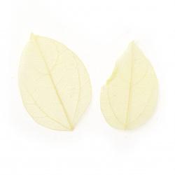 Frunze scheletice 60x20 ~ 90x45 mm pentru decorare culoare galben -20 bucăți