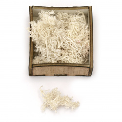 Scandinavian polar moss for decoration,  white - 10 grams