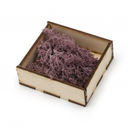 Scandinavian polar moss for decoration,  purple - 10 grams