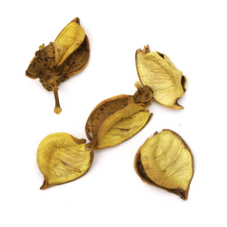 Dry leaves for decoration color yellow ~ 25 grams