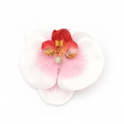 Orchid 70 mm with stump for installation white/pink -5 pieces