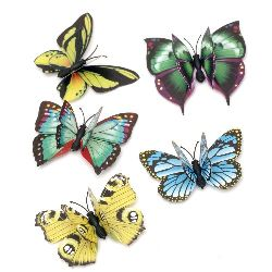 Magnet Butterfly 50x68 ~ 70x70 mm  MIX
