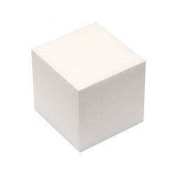 Cub din polistiren 100x100x100 mm -1 bucata