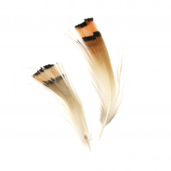 Feather for decoration 10~40 mm color orange and black - 25 grams
