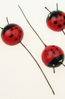 24 mm Styrofoam ladybug with wire -10 pieces for Hobby Craft Decoration