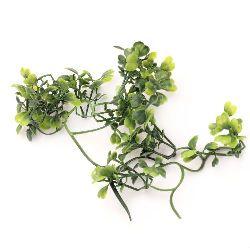 Растение за декорация чемшир 60x40 мм ~ 5 клонки