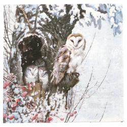 Салфетка за декупаж Ambiente 33x33 см трипластова Barn Owl -1 брой