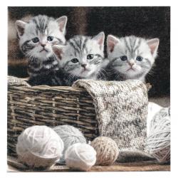 Салфетка ti-flair 33x33 см трипластова Striped Kittens -1 брой