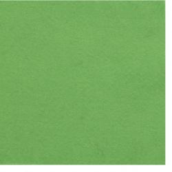 Pâslă moale 2 mm A4 20x30 cm culoare verde -1 bucată