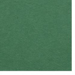 Pâslă moale 2 mm A4 20x30 cm culoare verde închis -1 bucată