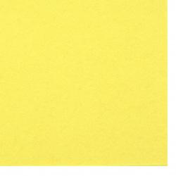 Филц мек 2 мм A4 20x30 см цвят жълт наситен -1 брой